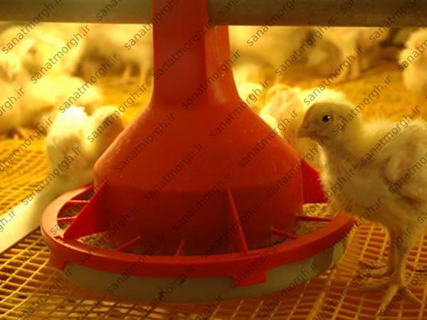 تولید کننده جدیدترین دانخوری صنعت مرغ