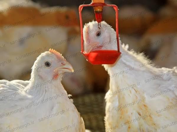 فروشگاه اینترنتی آبخوری نیپل صنعت مرغ