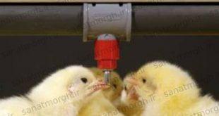 قیمت آبخوری نیپل صنعت مرغ
