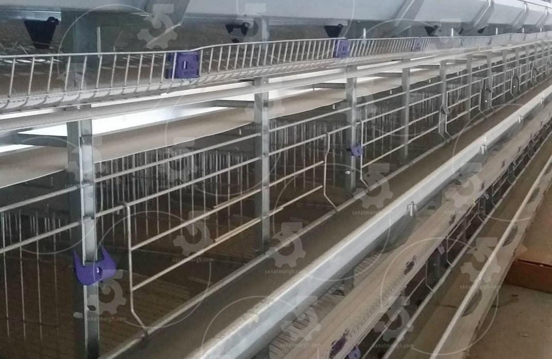 انواع قفس مرغ تخمگذار